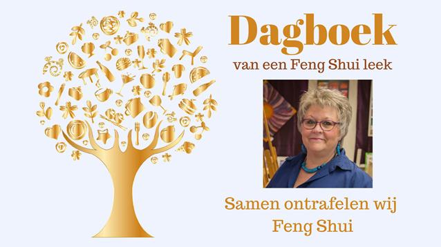 Her Dagboek van een Feng Shui leek wordt geschreven door Sylvia te Braake. Iedere pagina heeft een bepaald onderwerp. Sylvia schrijft zo ze het ervaart als een in het buitenland geboren kind van Nederlandse ouder.
